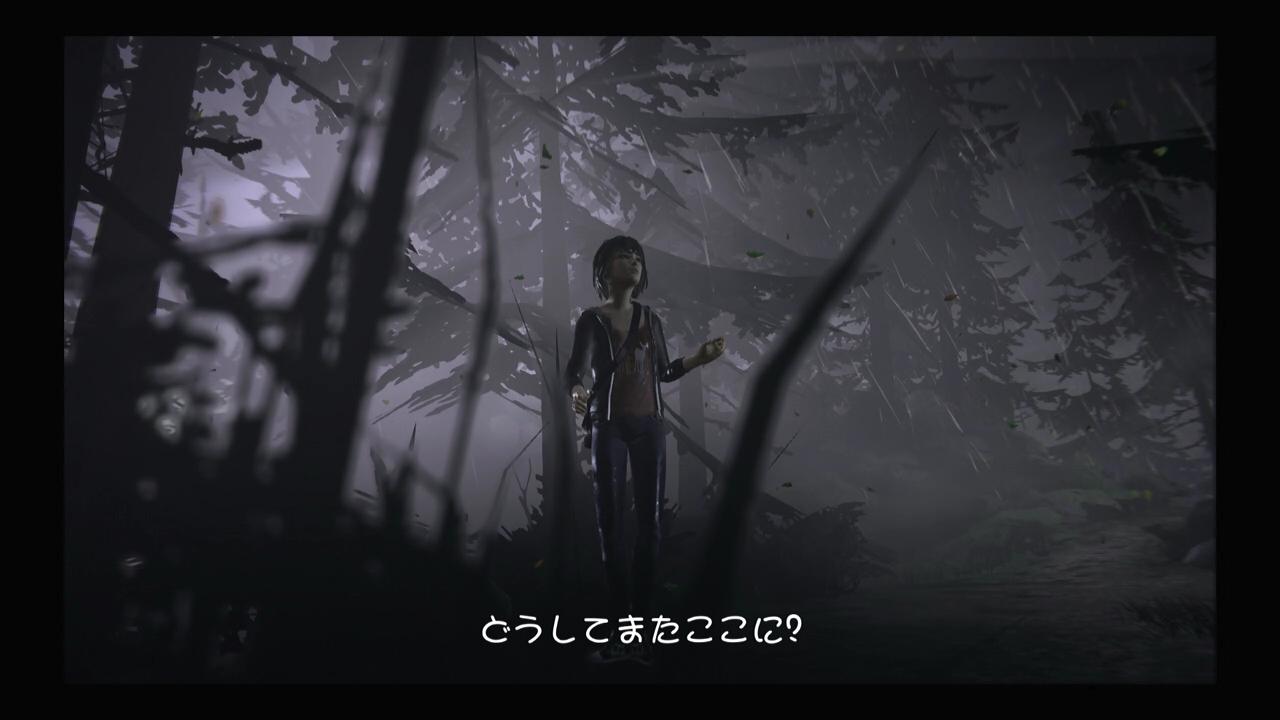life-11 (8)