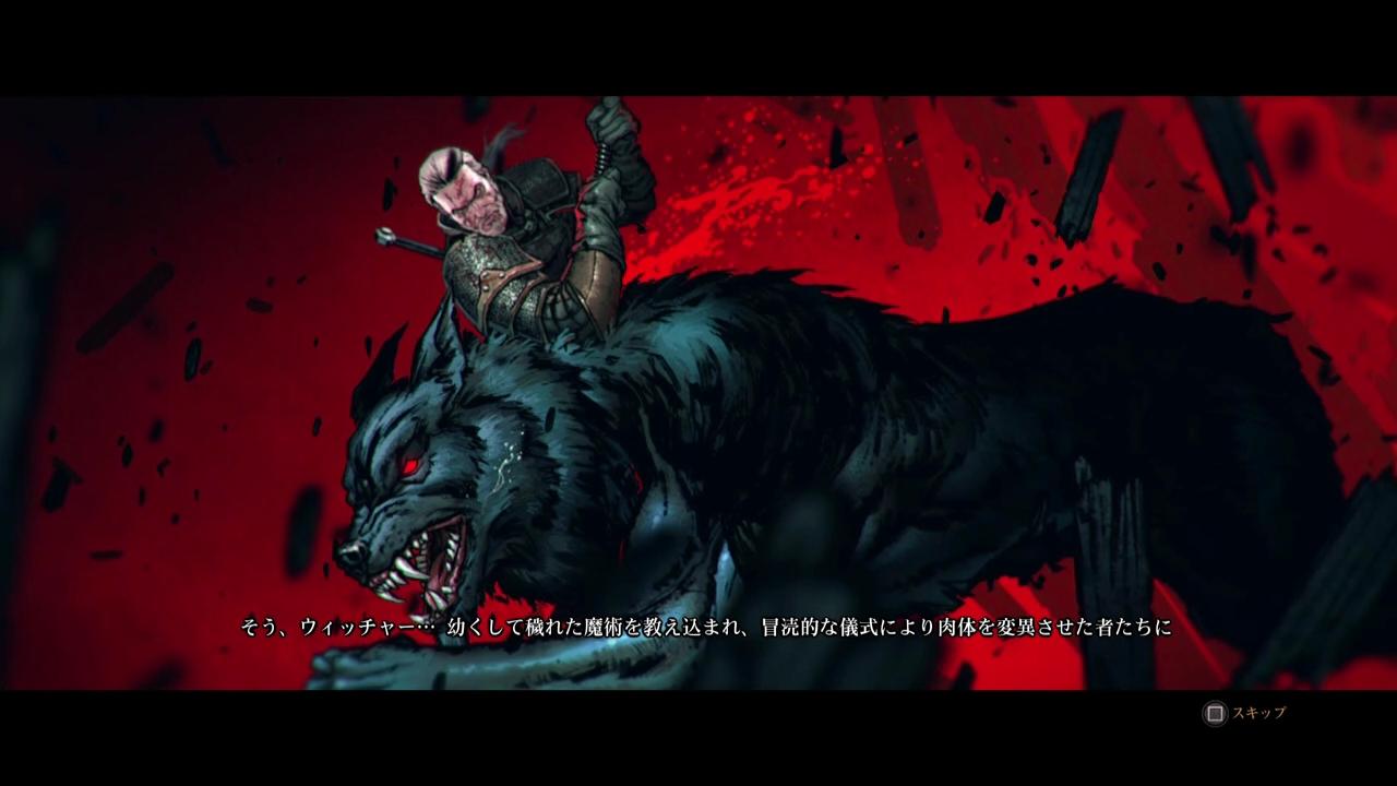 Witcher3-1 (7)
