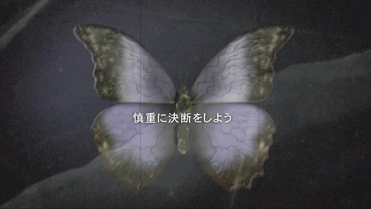 don (4)