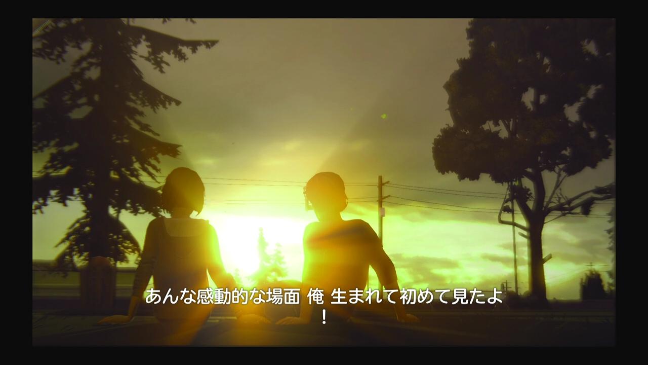 life20 (11)